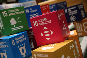 Process_Factory_Sustainable_Development_Goals