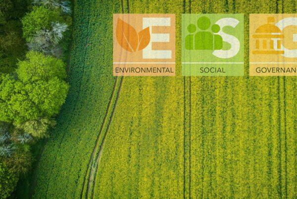 La ESG Ecosystem Map del World Economic Forum