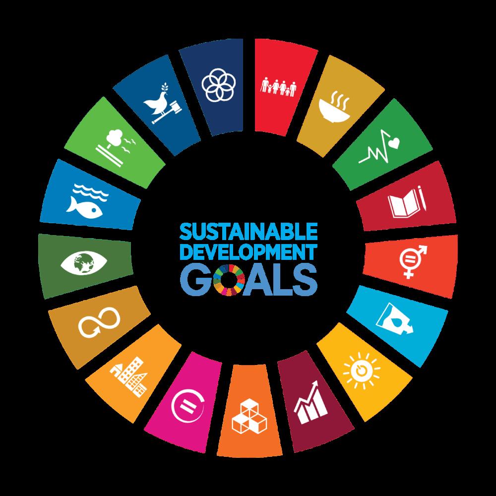 La visione di sviluppo sostenibile aziendale secondo Process Factory.